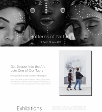 Modern Art Gallery web design