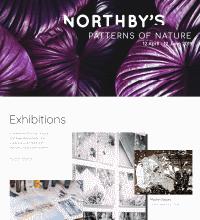 Art Gallery web design